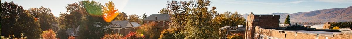 Ariel view of Roanoke College